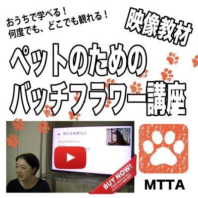 画像1: ペットのための心のケア バッチフラワーレメディ 映像教材